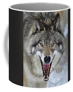 Coffee Mug featuring the photograph Joker by Tony Beck