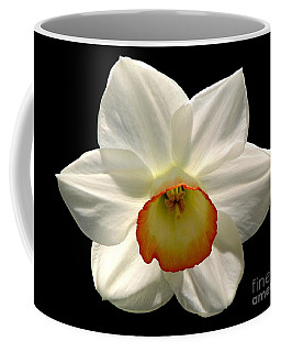 Jonquil 1 Coffee Mug by Rose Santuci-Sofranko