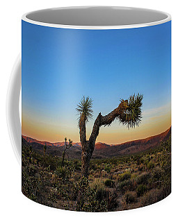Coffee Mug featuring the photograph Joshua Tree by Alison Frank
