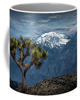 Coffee Mug featuring the photograph Joshua Tree At Keys View In Joshua Park National Park by Randall Nyhof
