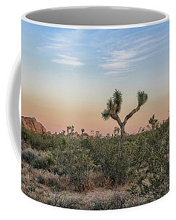 Coffee Mug featuring the photograph Joshua Tree Evening by Alison Frank