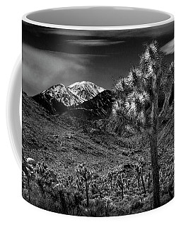 Coffee Mug featuring the photograph Joshua Tree In Black And White In Joshua Park National Park With The Little San Bernardino Mountains by Randall Nyhof