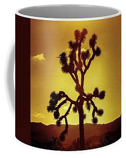 Coffee Mug featuring the photograph Joshua Tree by Stephen Stookey