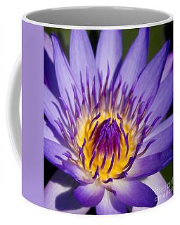 Journey Into The Heart Of Love Coffee Mug