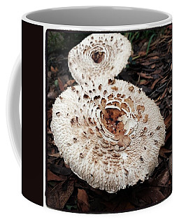 Coffee Mug featuring the photograph Joy Walking In The Woods by Mr Photojimsf