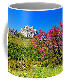Coffee Mug featuring the photograph Judas Tree In Sainte Baume by Olivier Le Queinec