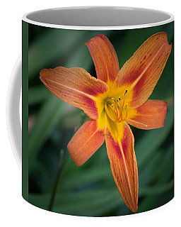 July Tiger Lily Coffee Mug