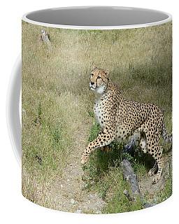 Coffee Mug featuring the photograph Jump 2 by Fraida Gutovich
