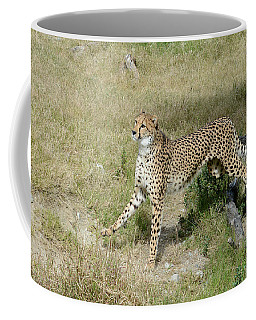 Coffee Mug featuring the photograph Jump 3 by Fraida Gutovich