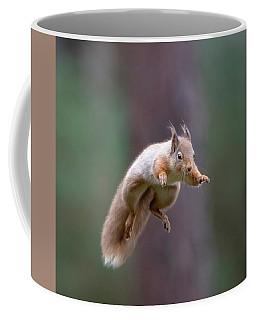 Jumping Red Squirrel Coffee Mug