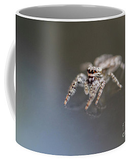 Jumping Spider On Glass Table Coffee Mug