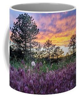 June Color At The Rimrocks Coffee Mug