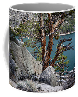 June Lake Juniper Coffee Mug
