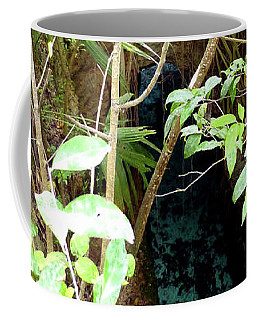 Coffee Mug featuring the photograph Jungle Stream by Francesca Mackenney