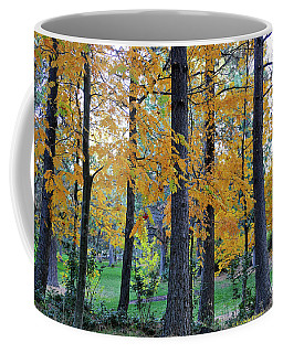 Mountain Ash Under Pine Coffee Mug