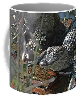Coffee Mug featuring the photograph Just A Baby by Sally Sperry