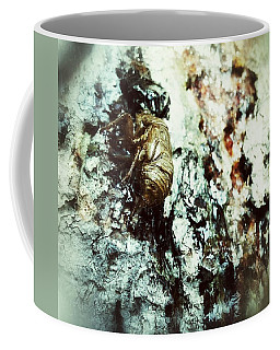 Coffee Mug featuring the photograph Just A Shell by Robert Knight