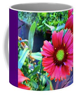 Just Brilliant Coffee Mug
