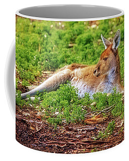 Just Chillin, Yanchep National Park Coffee Mug by Dave Catley