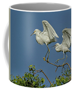 Just Do What I Do . . . Coffee Mug