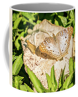 Coffee Mug featuring the photograph Just Hanging Out by Jane Luxton
