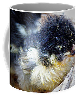 Just Hatched Coffee Mug
