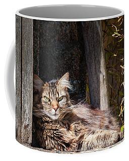Just Lazing Around Coffee Mug