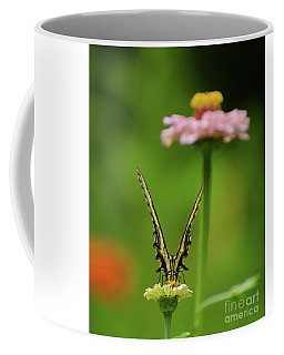 Coffee Mug featuring the photograph Just Look At Me  by Donna Brown