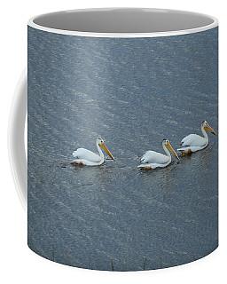 Triple Pelicans Lake John Swa Co Coffee Mug