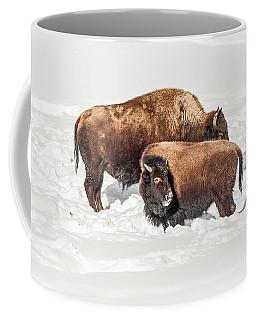 Juvenile Bison With Adult Bison Coffee Mug