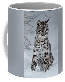 Juvenile Bobcat In The Snow Coffee Mug