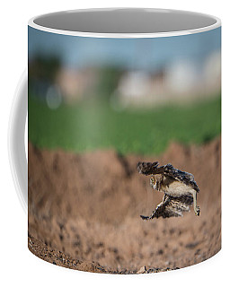 Juvenile Burrowing Owl Testing Out His Wings Coffee Mug