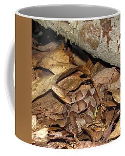 Juvenile Copperhead  Coffee Mug