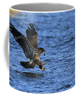 Juvenile Eagle Fishing Coffee Mug