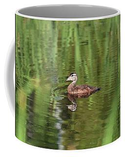 Coffee Mug featuring the photograph Juvenile Mallard by Sally Sperry