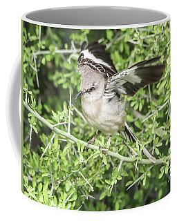 Juvenile Mockingbird With Crossbill Coffee Mug