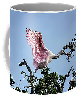 Juvenile Roseate Spoonbill Readying Its Wings Coffee Mug