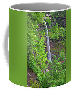 Kaaterskill Falls 2018 Coffee Mug