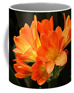 Kaffir Lily #2 Coffee Mug