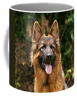 Kaiser - German Shepherd Coffee Mug
