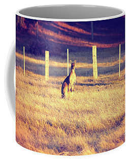 Coffee Mug featuring the photograph Kangaroo At Dusk by Cassandra Buckley