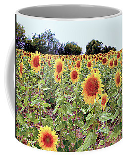 Kansas Sunflower Field Coffee Mug