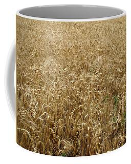 Kansas Wheat Coffee Mug