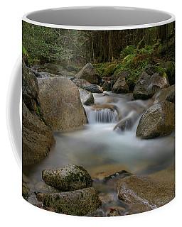 Katahdin Stream Cascades Coffee Mug