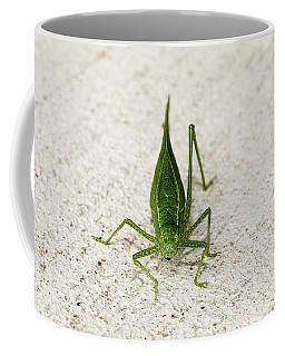 Katydid Front Coffee Mug