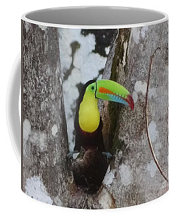 Keel-billed Toucan #2 Coffee Mug