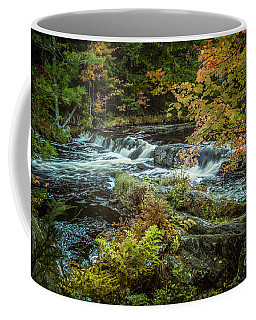 Kejimkujik National Park Coffee Mug