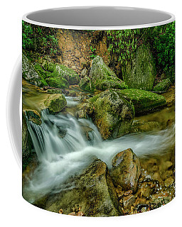Coffee Mug featuring the photograph Kens Creek In Cranberry Wilderness by Thomas R Fletcher