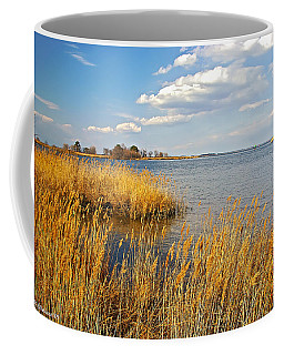 Kent Island Coffee Mug by Brian Wallace