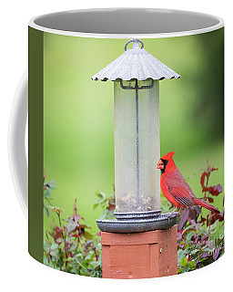 Coffee Mug featuring the photograph Kentucky Cardinal  by Ricky L Jones